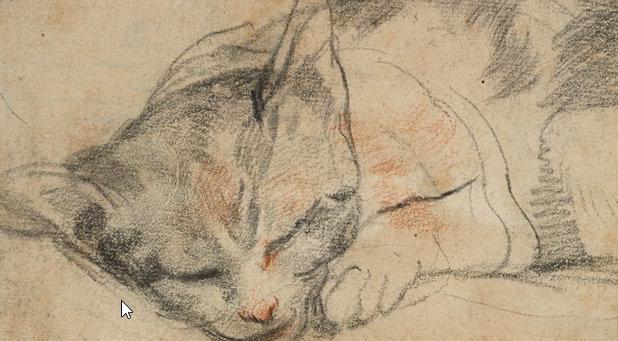 Ganz große Kunst:Katzen
