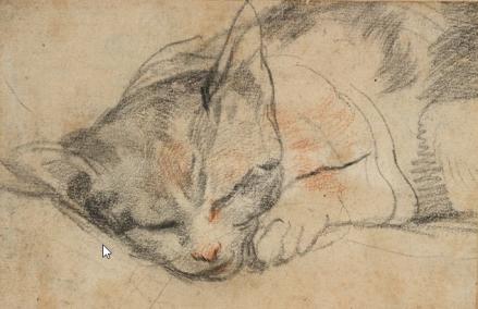 federico-barocci-study-of-al-cat-sleeping