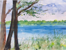 """""""An den Ufern unserer großen Seen gibt es mit hohem Schilf bestandene Niederungen ..."""""""